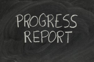 Progress Reports and Interviews